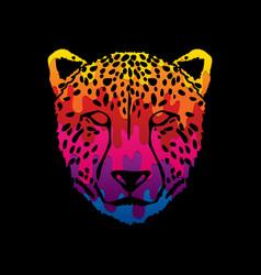 cheetah face tiger head panthera front view face vector image