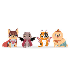 Cats and dogs in costumes for halloween vector