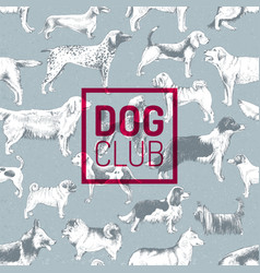 dog club label over pattern with hand drawn dogs vector image