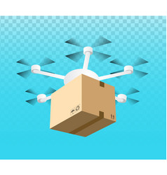 drone delivery concept vector image vector image