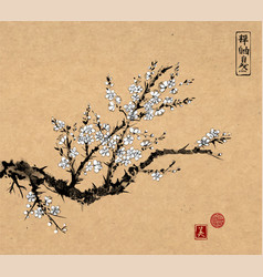 Oriental sakura cherry tree in blossom on vintage vector