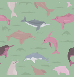 river dolphins seamless pattern marine mammals vector image