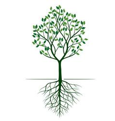 Shape green tree outline vector