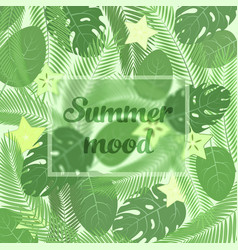 the summer mood lettering in a frame on the vector image vector image