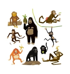 Different monkeys in different poses 2016 symbol vector image