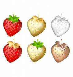strawberry set isolated on white vector image vector image