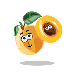 fun cartoon apricot fruit character with leaf vector image vector image