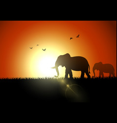 Elephant silhouette at sunset vector