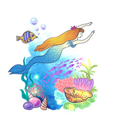 hand drawn mermaid vector image