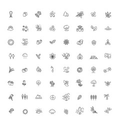 set outline natural icons vector image
