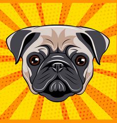 pug dog face dog portait vector image