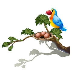 A big branch of a tree with a nest and a bird vector image