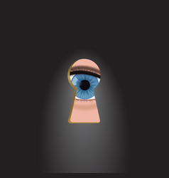 blue eyes in the keyhole vector image