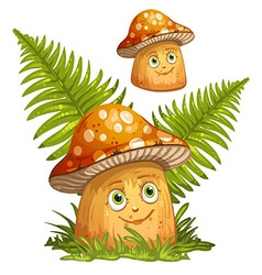 Cartoon mushrooms and ferns vector image