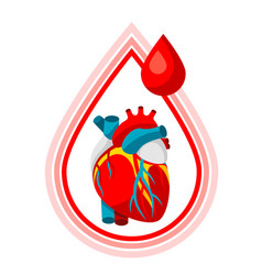 donate blood medical and healthcare i vector image