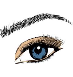 eye on white background eyes art woman vector image