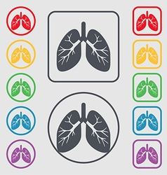 Lungs icon sign symbol on the Round and square vector image