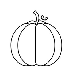 Pumpkin thanksgiving isolated icon vector