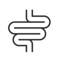 Small intestine organ icon set vector