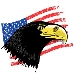 Eagle Head with Grunge American Flag - USA Symbol vector image