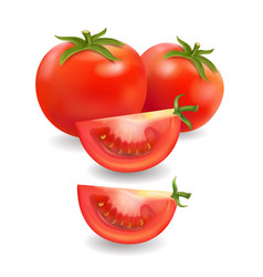 tomato and slice realistic isolated vector image vector image