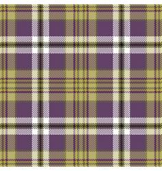 plaid vector image vector image