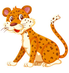 a leopard on white background vector image