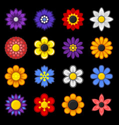 color flower icons set on black background vector image vector image