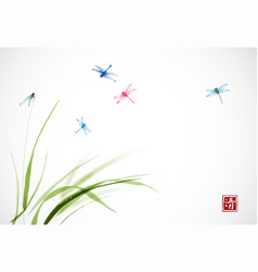 dragonflies flying over the green grass vector image