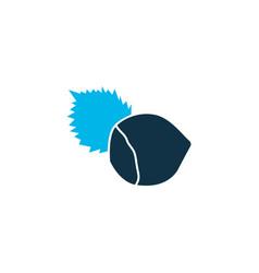 hazelnut icon colored symbol premium quality vector image