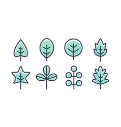 leaf design line icon green line leaf vector image