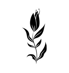 minimalist tattoo flower nature botanical vector image