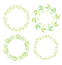 watercolor green leaves circle wreath frame vector image