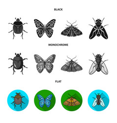 Wrecker parasite nature butterfly insects set vector