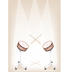 Two Beautiful Snare Drum on Brown Stage Background vector image