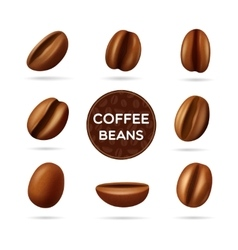 Coffee beans concept set vector image vector image
