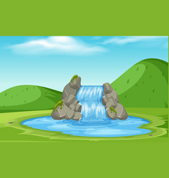 a nature waterfall landscape vector image