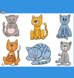 cartoon cats and kittens characters set vector image