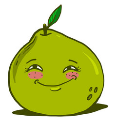 Cute green pomelo on white background vector