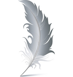 Feather pen vector
