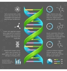 Infographic template with DNA structure for vector image