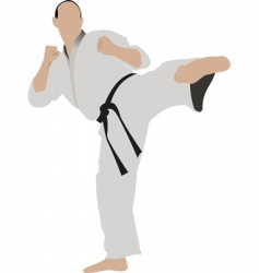 Karate sportsman vector
