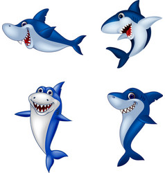 printcartoon shark collection set vector image