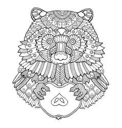 raccoon coloring book vector image
