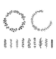 set of wild flowers and wreaths isolated vector image