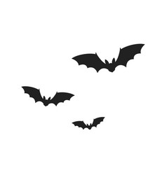 bats isolated on white background vector image