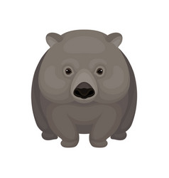 Detailed flat icon of cute gray wombat vector