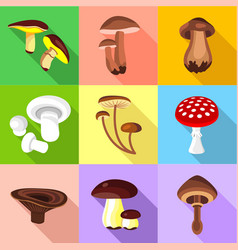 Different mushroom icons set flat style vector