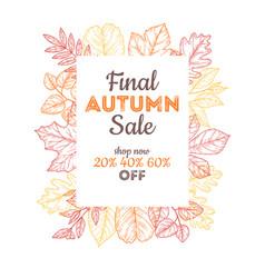 final sale autumn banner discount poster vector image