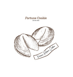 Fortune cookies hand-drawn vector